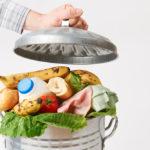 Almanya'da daha az gıda maddesi çöpe gidecek