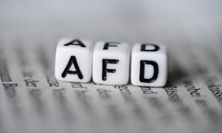 AfD'ye Para Cezası Gelebilecek