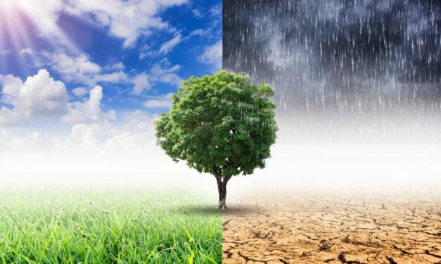 Almanya'nın gündemi iklim politikaları