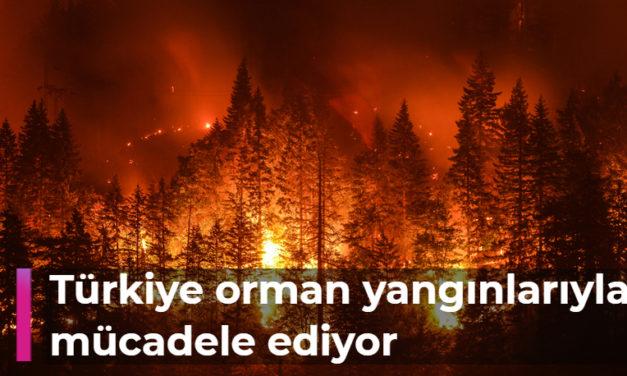 Türkiye orman yangınlarıyla mücadele ediyor